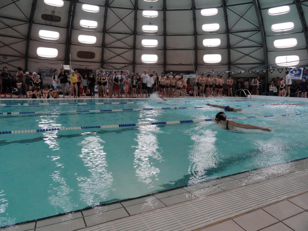 Coupe de la ville 2014 csbj natation for Piscine bourgoin jallieu